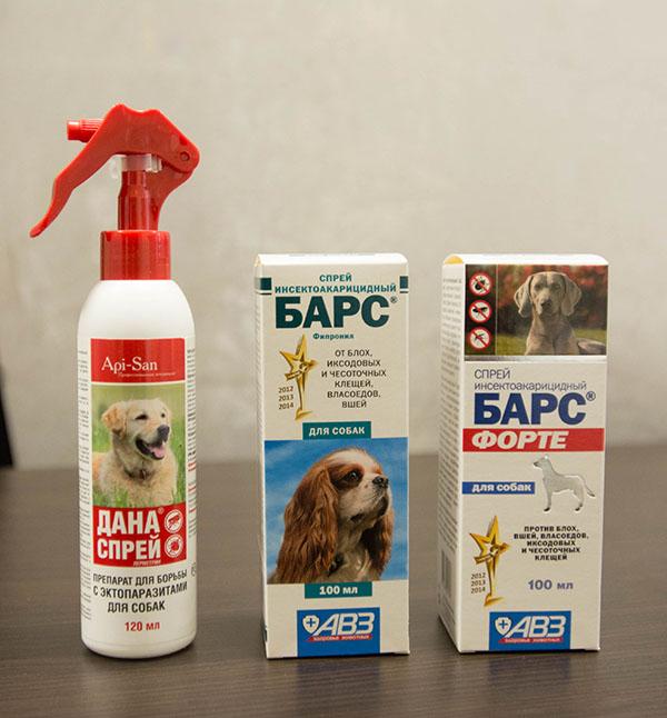 Как быстро вывести блох у собаки домашними средствами и лекарствами