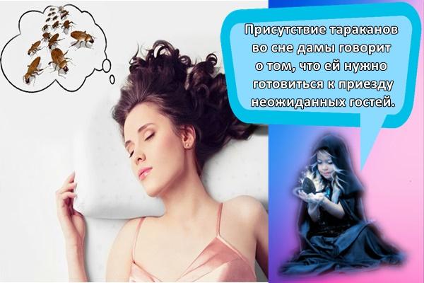 Сонник таракан  приснился, к чему снится таракан во сне видеть?