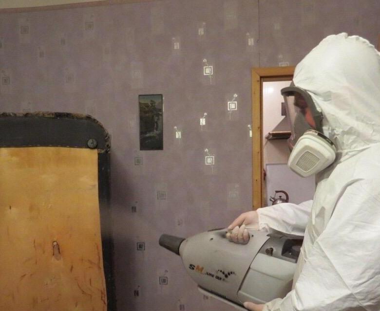 Подготовка помещения к дезинфекции от клопов и тараканов