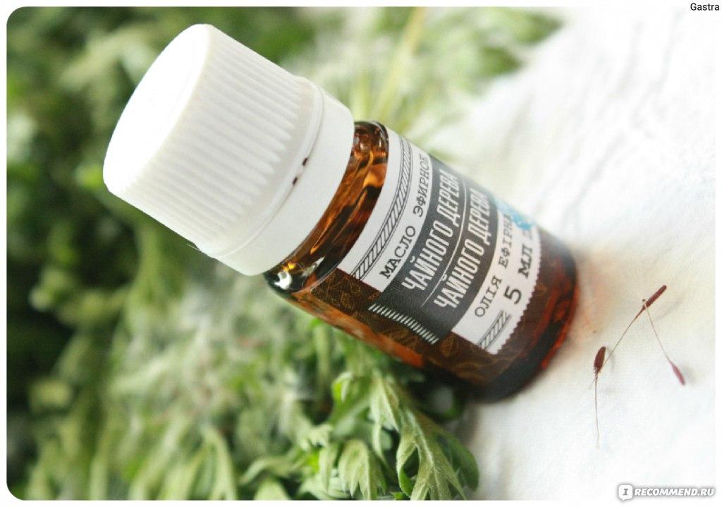 Безопасные средства: эфирные масла от клопов в доме