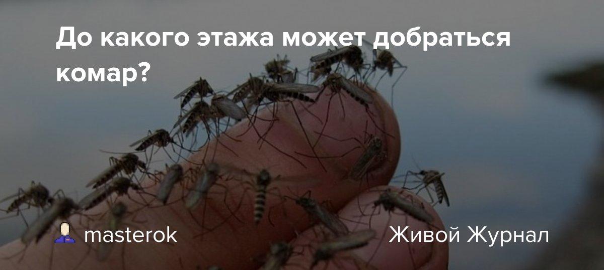 Как высоко летают комары и мухи - сорнякам нет
