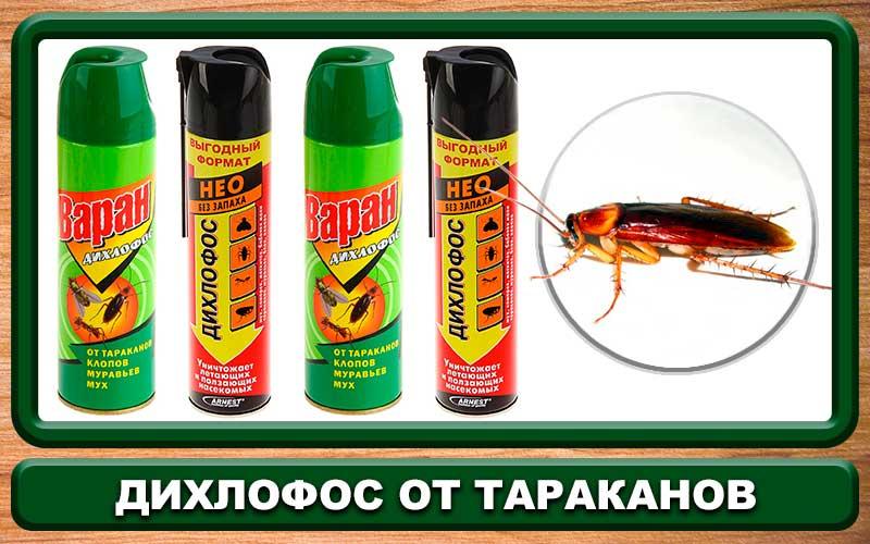 Дихлофосы от тараканов - инструкция по применению и отзывы
