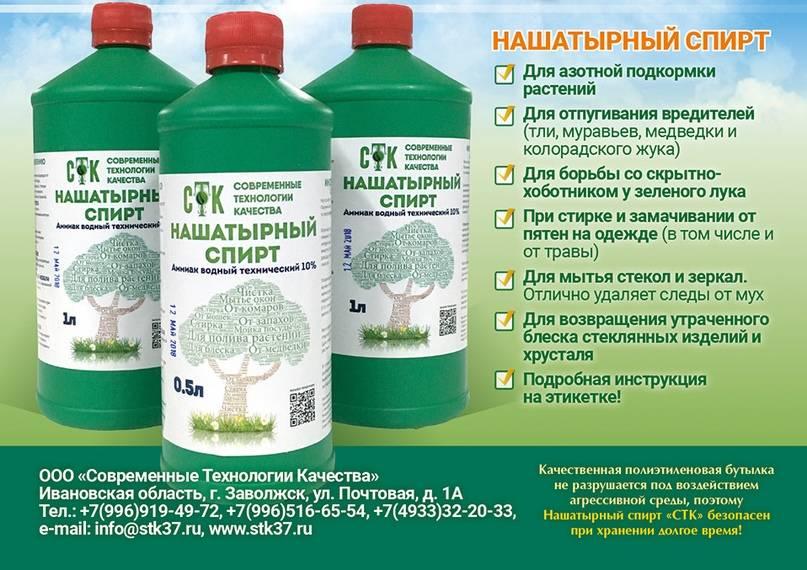 Нашатырный спирт от тли: применение – опрыскивание плодовых деревьев, как обработать перцы и смородину в огороде, как избавиться