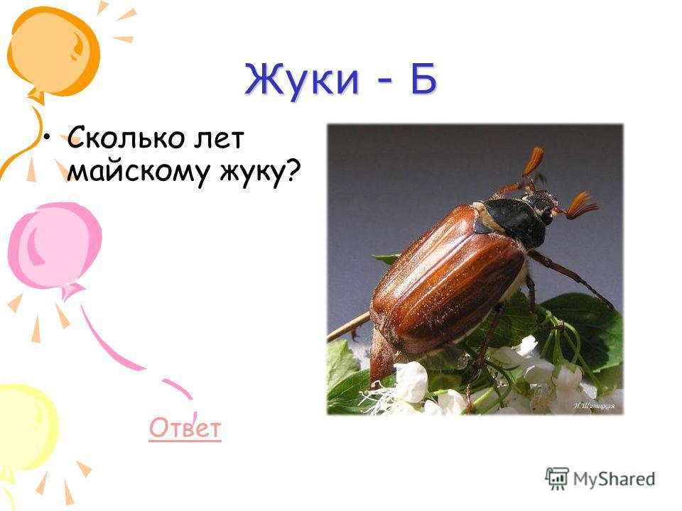 Сонник мухи жуки. к чему снится мухи жуки видеть во сне - сонник дома солнца
