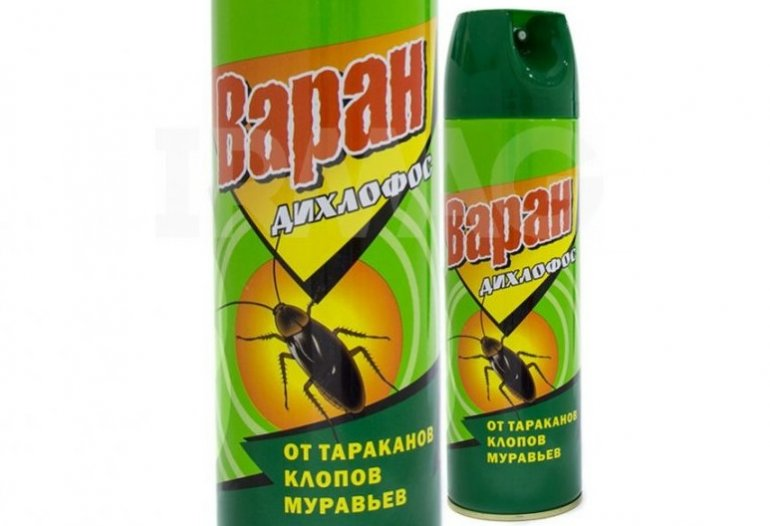 Дихлофос от тараканов с запахом и без: 5 видов и инструкция по применению