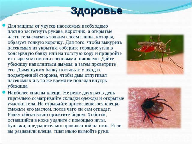 Чем опасен укус шершня для человека и как оказать первую помощь