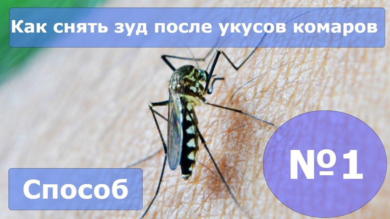 Снять зуд после укуса насекомых: чем и как в домашних условиях