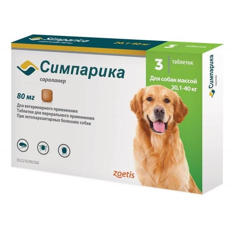 Таблетки симпарика от блох и клещей: способы применения для собак и кошек