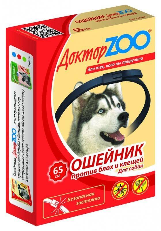 Ошейник для собак от блох и клещей: какой выбрать?