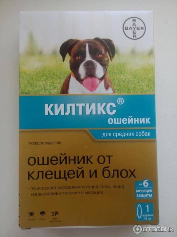 ❶ топ-11 лучших средств для собак от блох и клещей (таблетки, капли, спреи, ошейники)