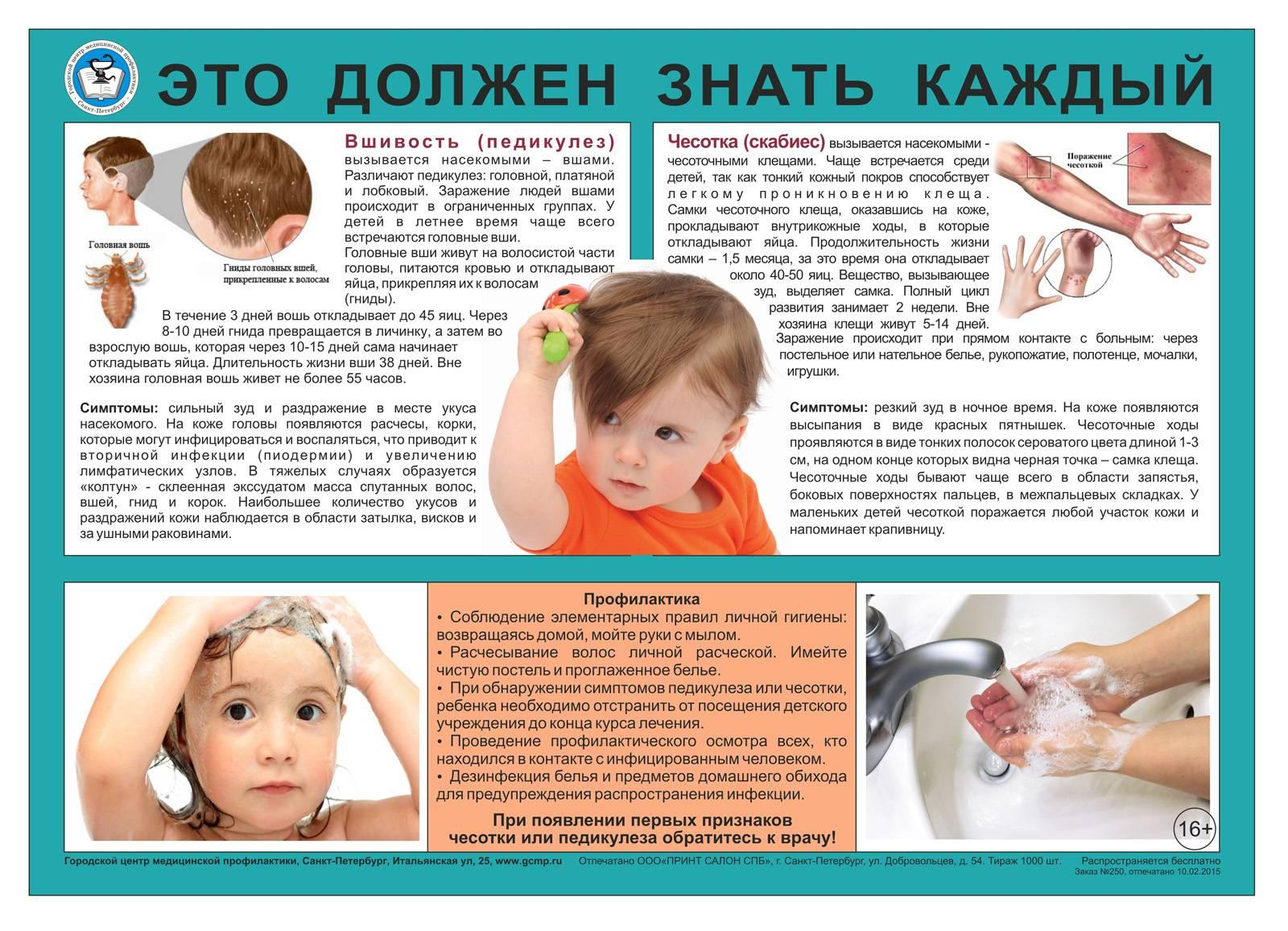 Профилактика вшей у детей в домашних условиях, детском саду и школе - методы, осмотры и средства борьбы