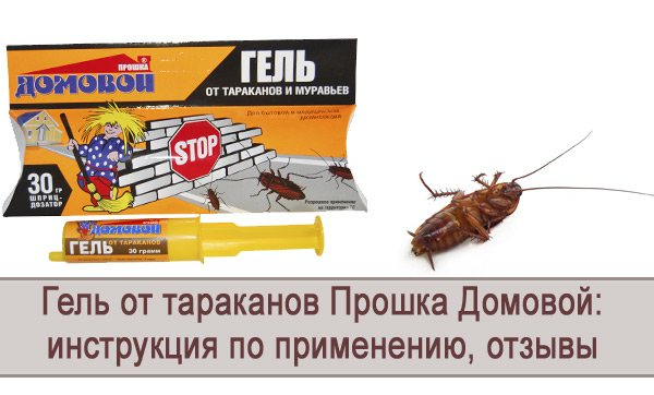 ❶ уничтожение тараканов озоном с помощью озонатора: как озон воздействует на тараканов, эффективность метода, отзывы об использовании