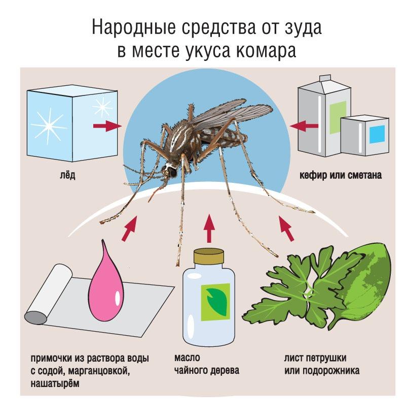 Что помогает от комаров – химия против народных средств