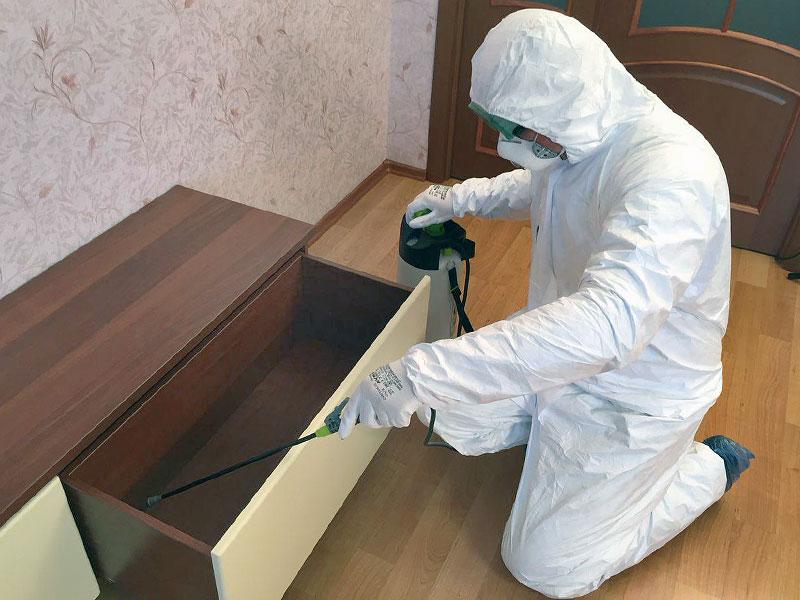 Защита от клопов в домашних условиях