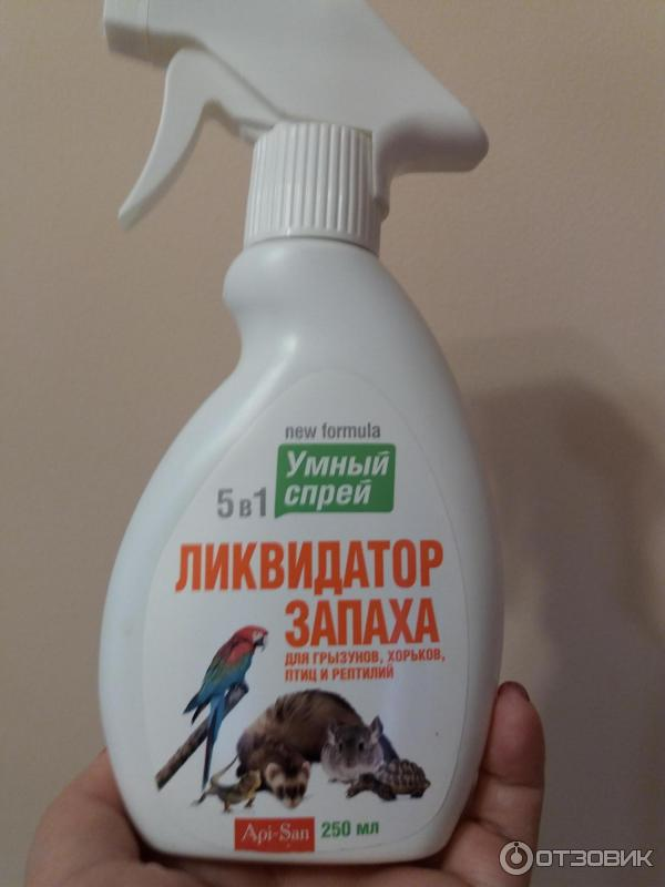 Как избавиться от запаха мышей в домашних условиях