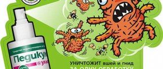 Масла для лечения вшей и гнид для детей и взрослых в домашних условиях
