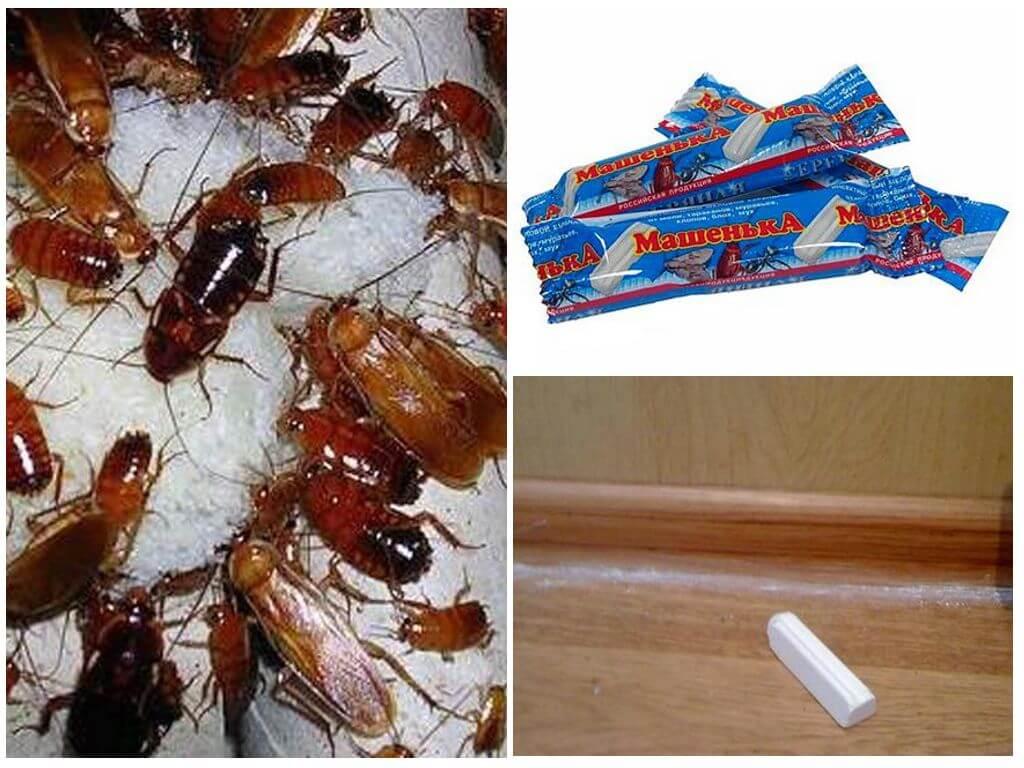 Карандаш от тараканов машенька: инструкция, цена, где купить мелок, отзывы о средстве