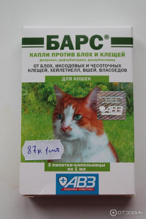 Средства от клещей для кошек: таблетки, спреи, уколы (прививки), мазь, капли и прочие препараты, какие из них помогут также от блох