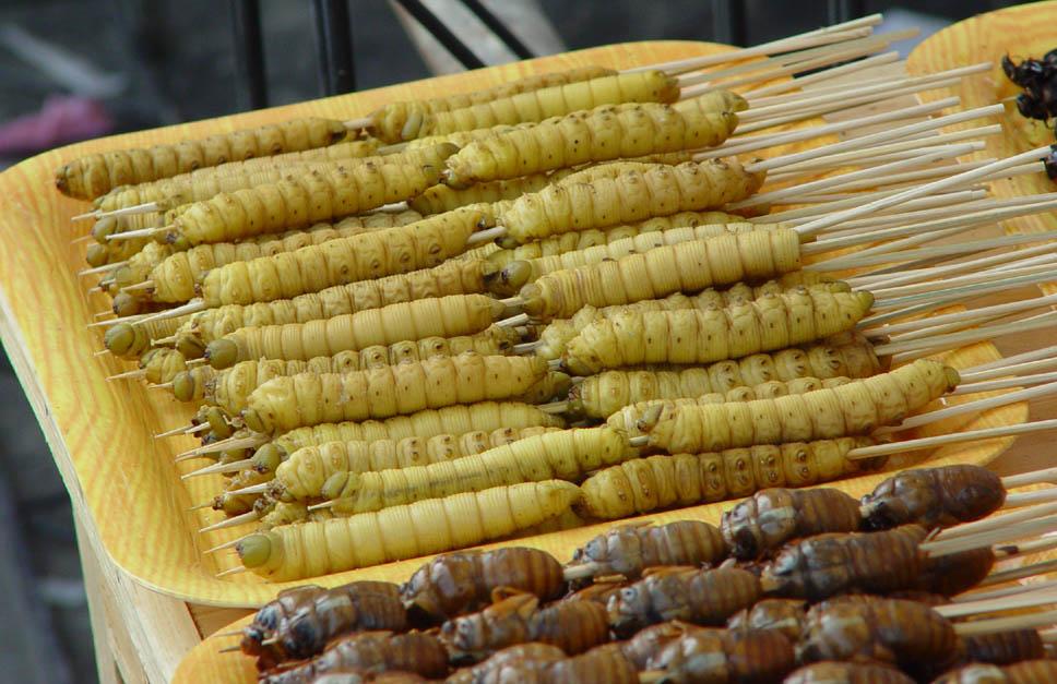Еда из насекомых: главный тренд мирового foodtech-рынка