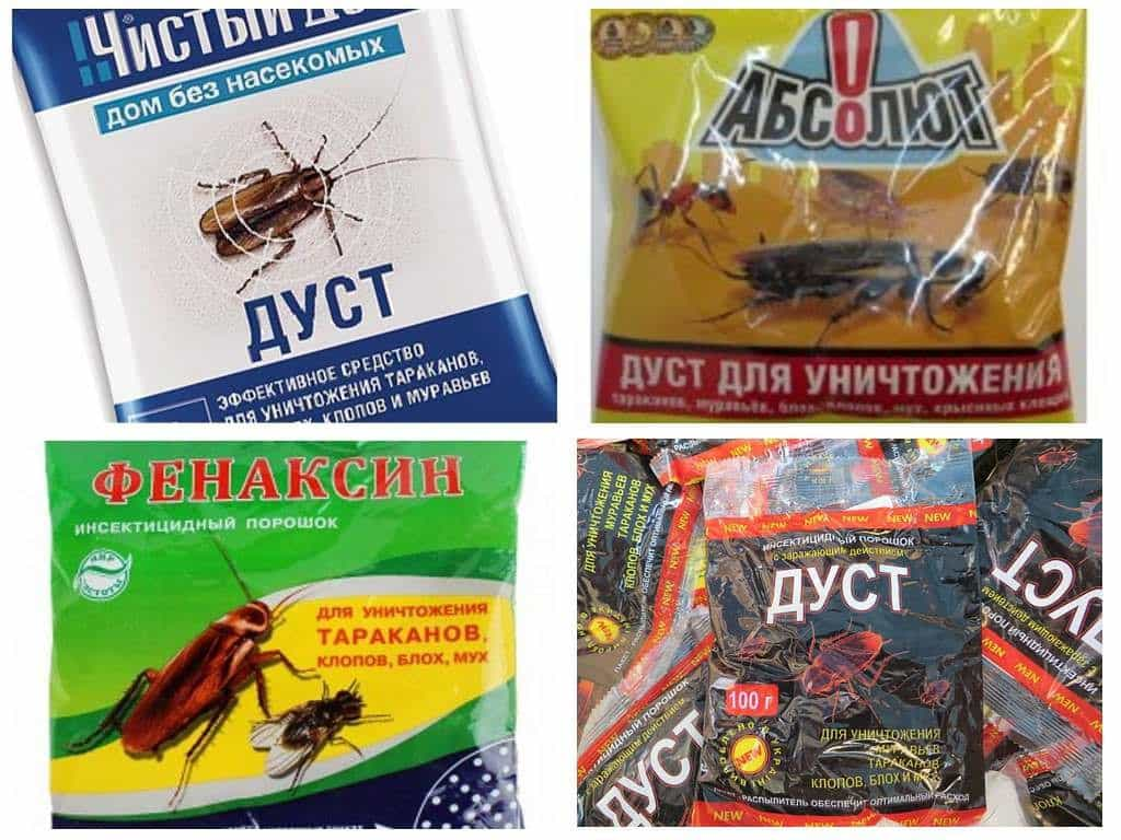 Обзор дустов от тараканов - отзывы и описание