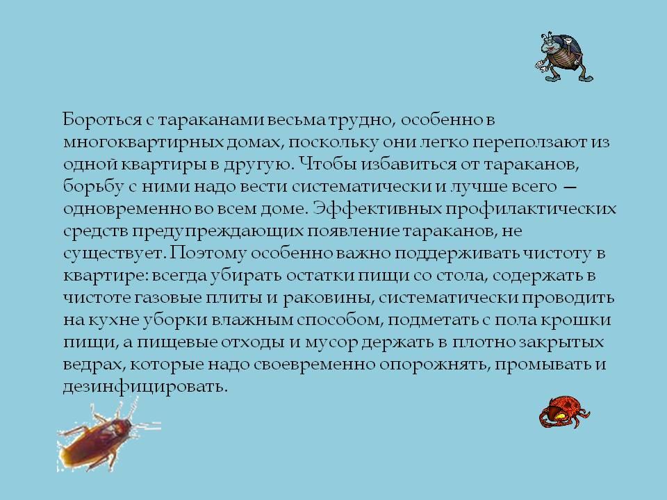 Ложноскорпион (лжескорпион)