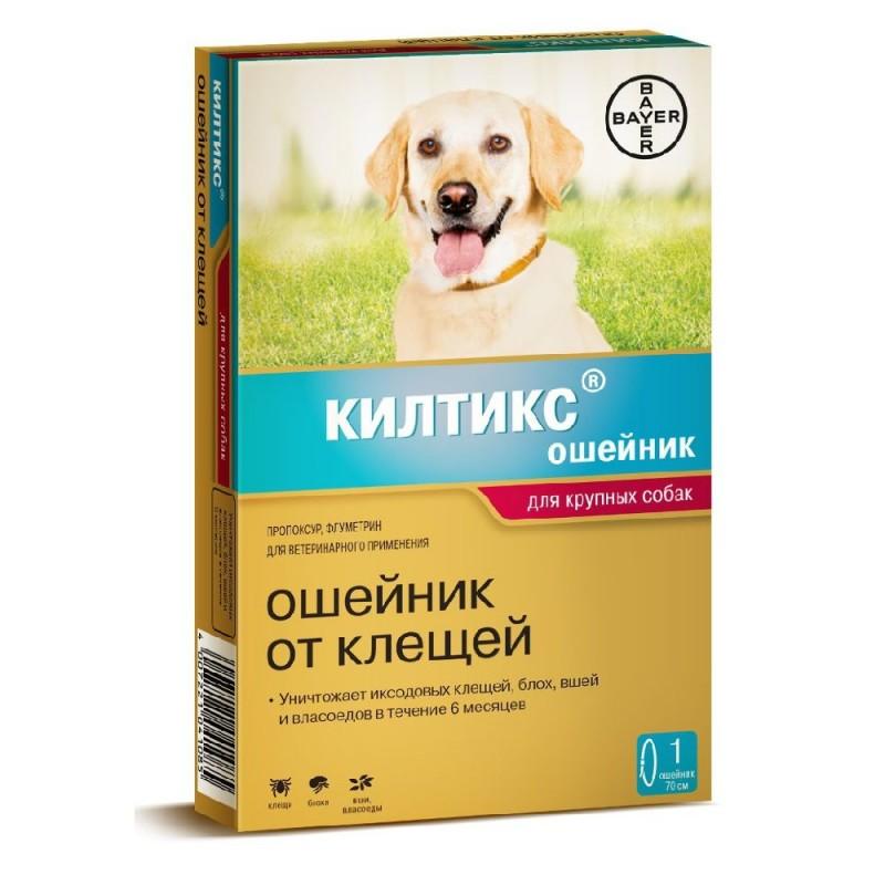Как подобрать ошейник от блох и клещей для собак?