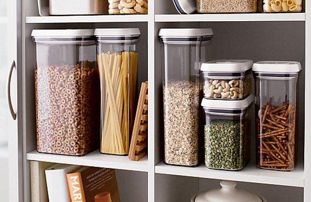 Кухонный вредитель моль пищевая: внешний вид, фото, где обитает, чем питается, меры борьбы и профилактики