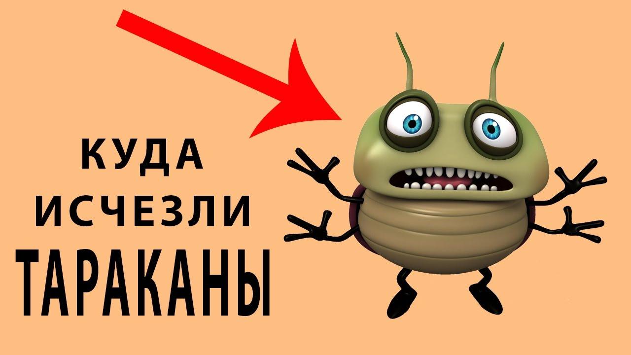 Почему исчезли тараканы и куда исчезли тараканы из квартир