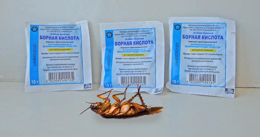 Борная кислота от тараканов рецепт