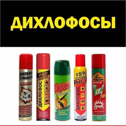Самый лучший дихлофос от тараканов. обзор разным марок, брендов
