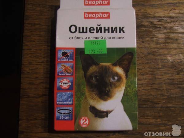 Ошейники для собак от блох и клещей: виды ошейников, преимущества и недостатки, инструкция по применению