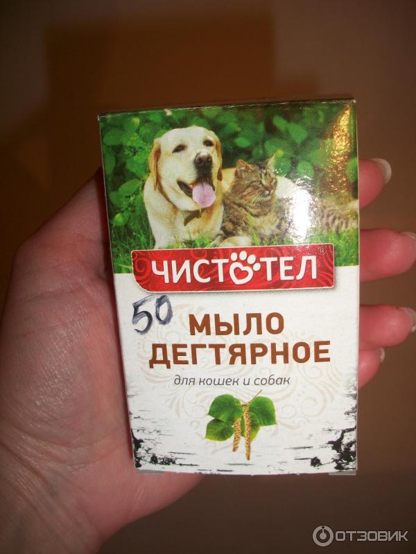 Дегтярное мыло от блох у кошек и собак: отзывы и инструкция