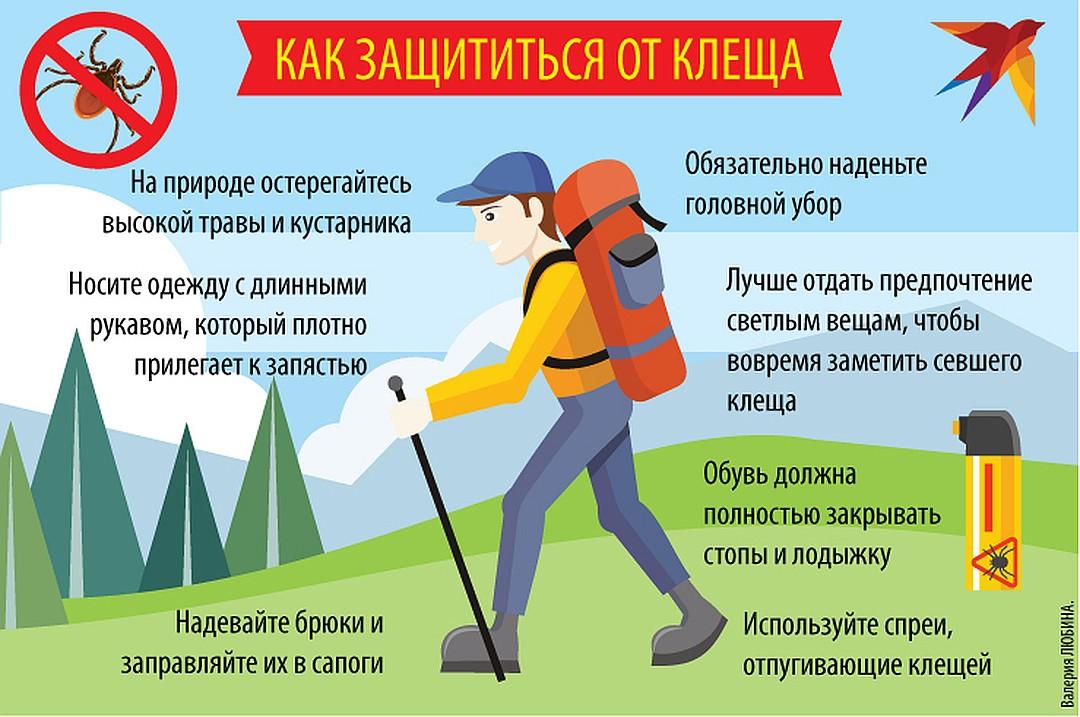 ❶ топ-5 эффективных способов защиты от клещей в лесу и в быту