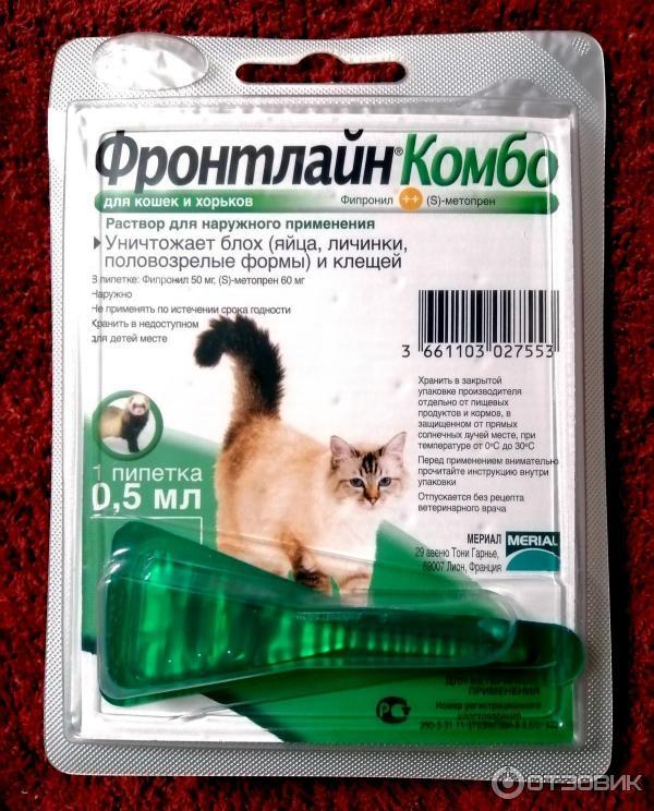 Таблетки от клещей для кошек: средства для защиты от паразитов