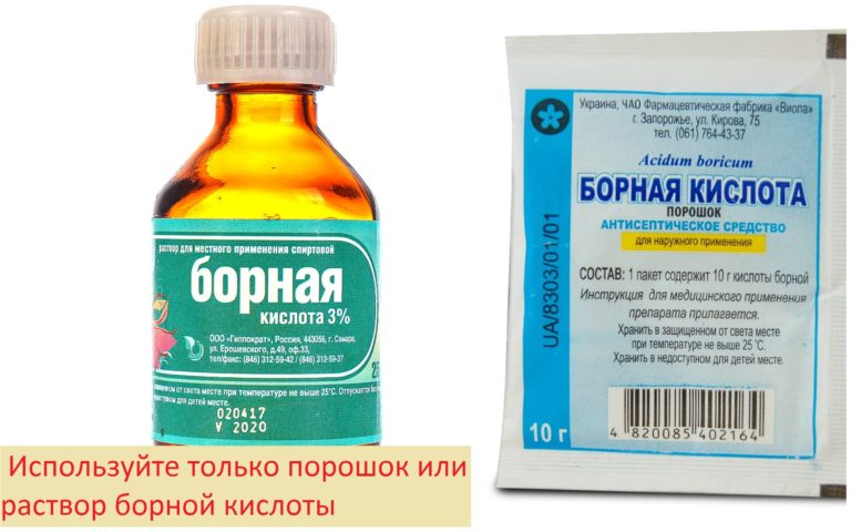 Рецепт борной кислоты для борьбы с тараканами / vantazer.ru – информационный портал о ремонте, отделке и обустройстве ванных комнат
