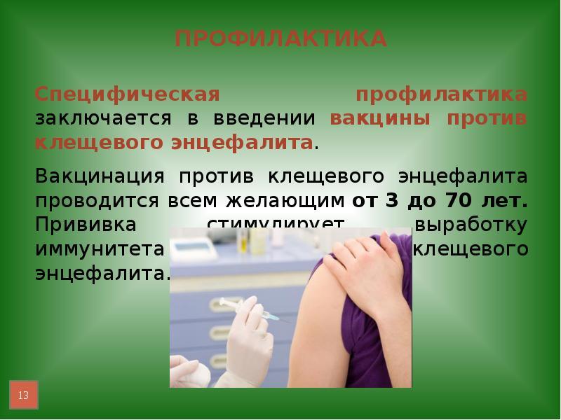 Прививка от клещевого энцефалита детям и взрослым: схема прививок, показания, как достать клеща