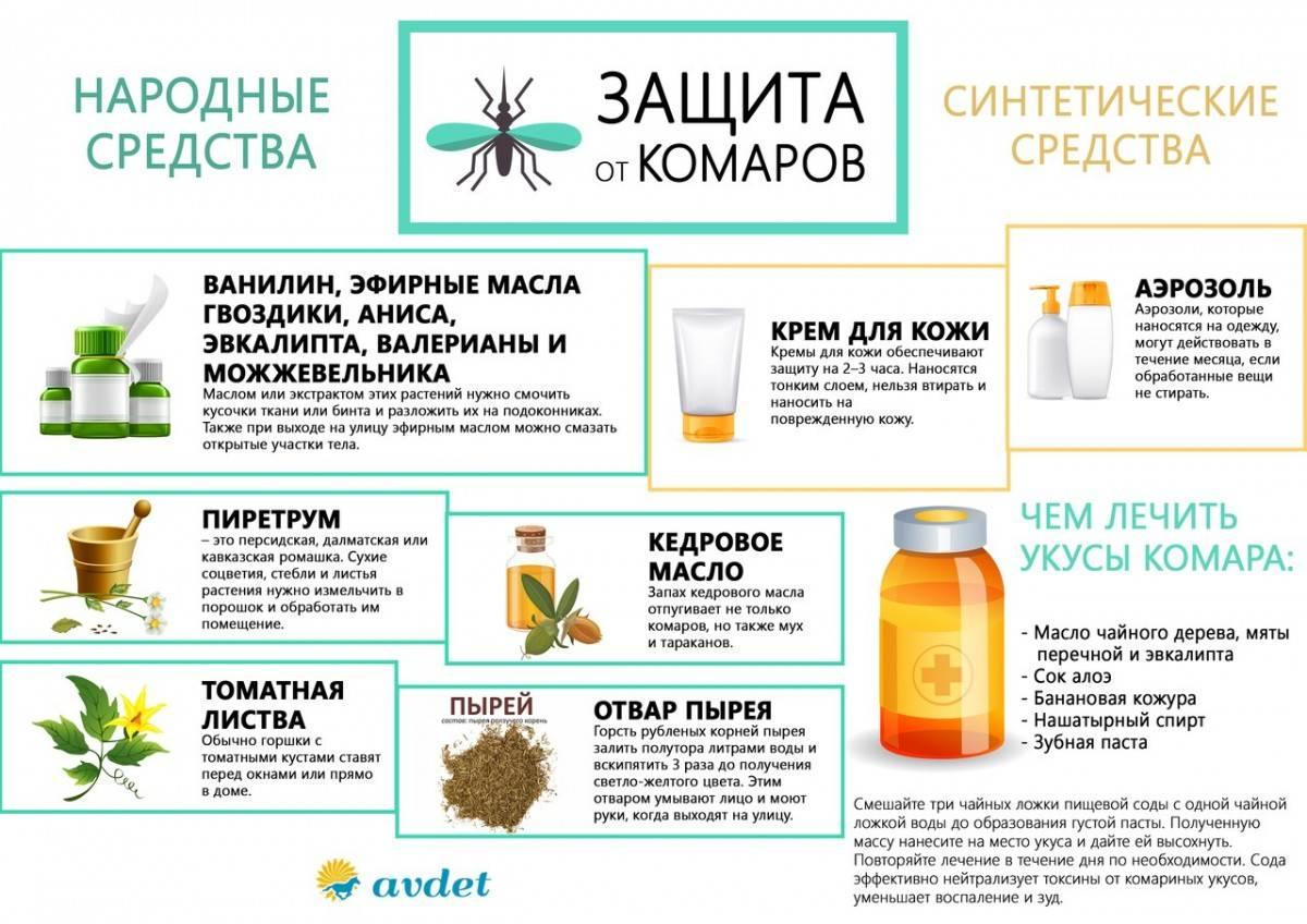 Как избавиться от комаров в доме: топ-10 способов