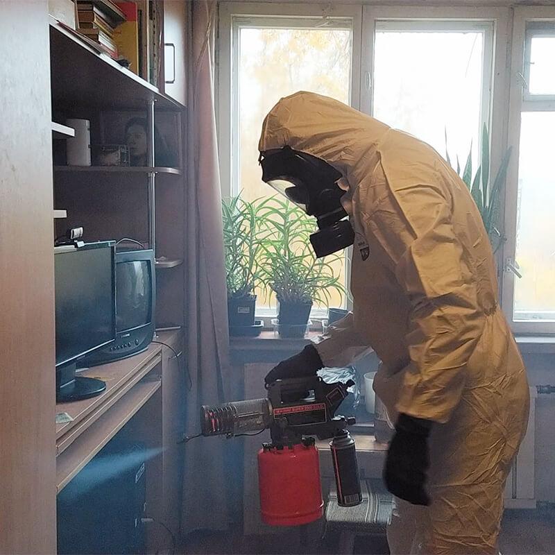 Как избавиться от запаха после уничтожения клопов или дезинсекционной обработки