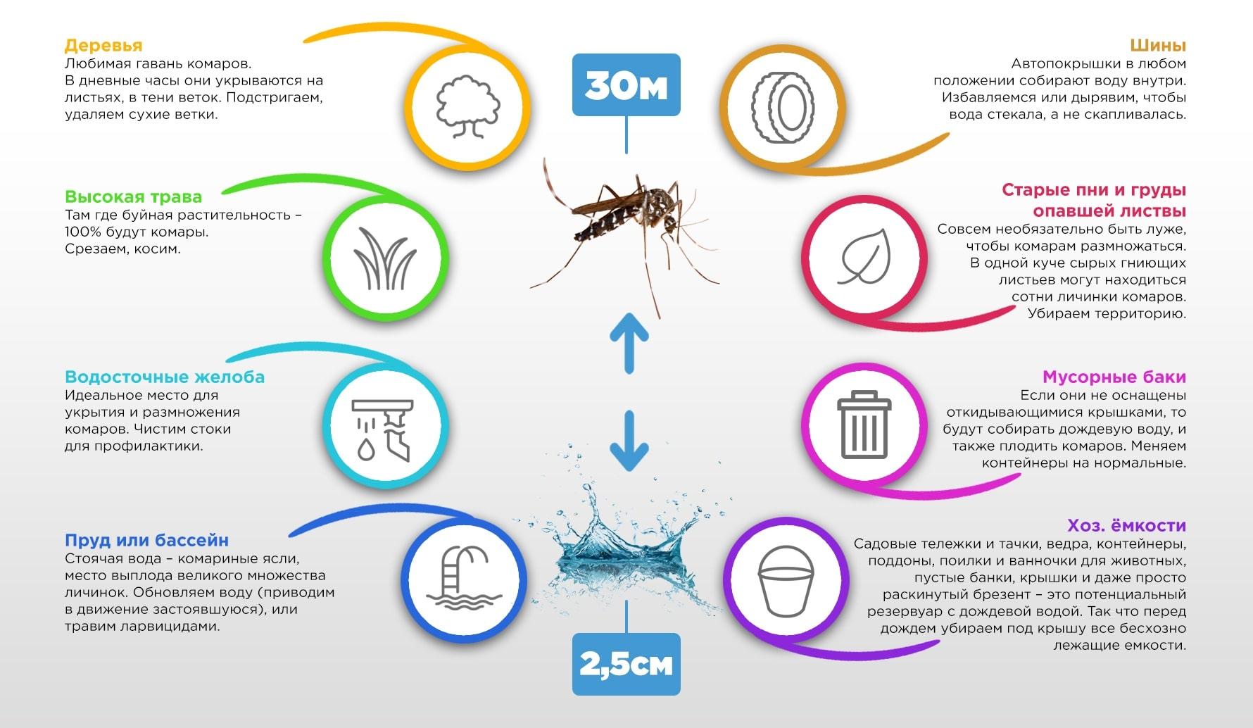 Сонник комары - сны