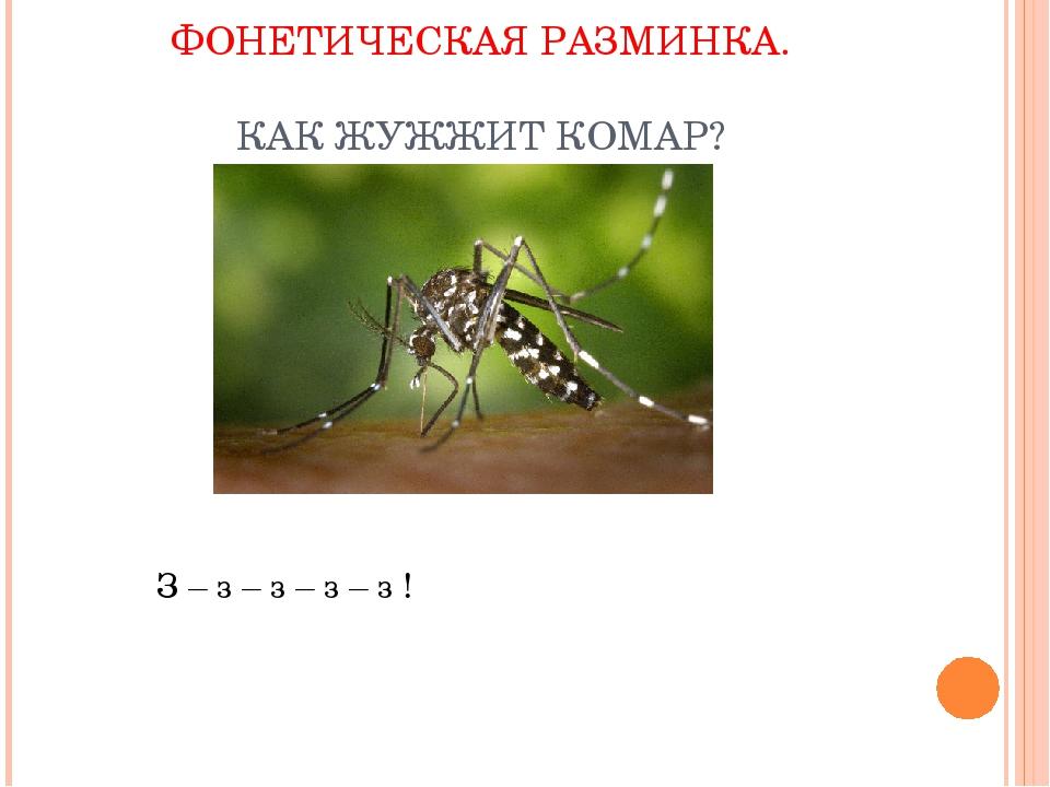 Почему комар пищит, а не жужжит, чем и как он издаёт такой звук? почему пищат комары, как у них получается издавать писк, а не жужжание?