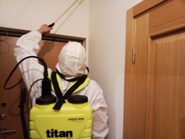 Служба уничтожения клопов в санкт-петербурге «герадез». дезинсекция квартир и помещений