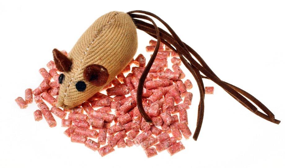 Собака съела крысиный яд: смертельная доза, признаки отравления