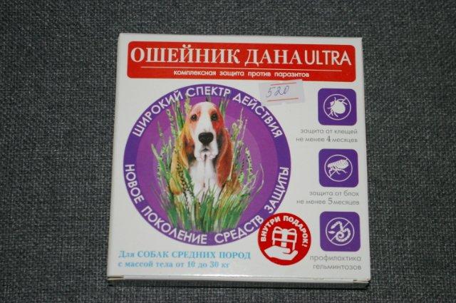 Осложнения у собак после прививки от бешенства: возможные реакции и методы их устранения