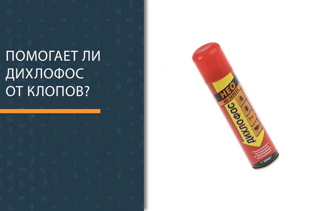 Дихлофос от клопов помогает ли? как действует дихлофос варан и нео на постельных паразитов - rus-womens