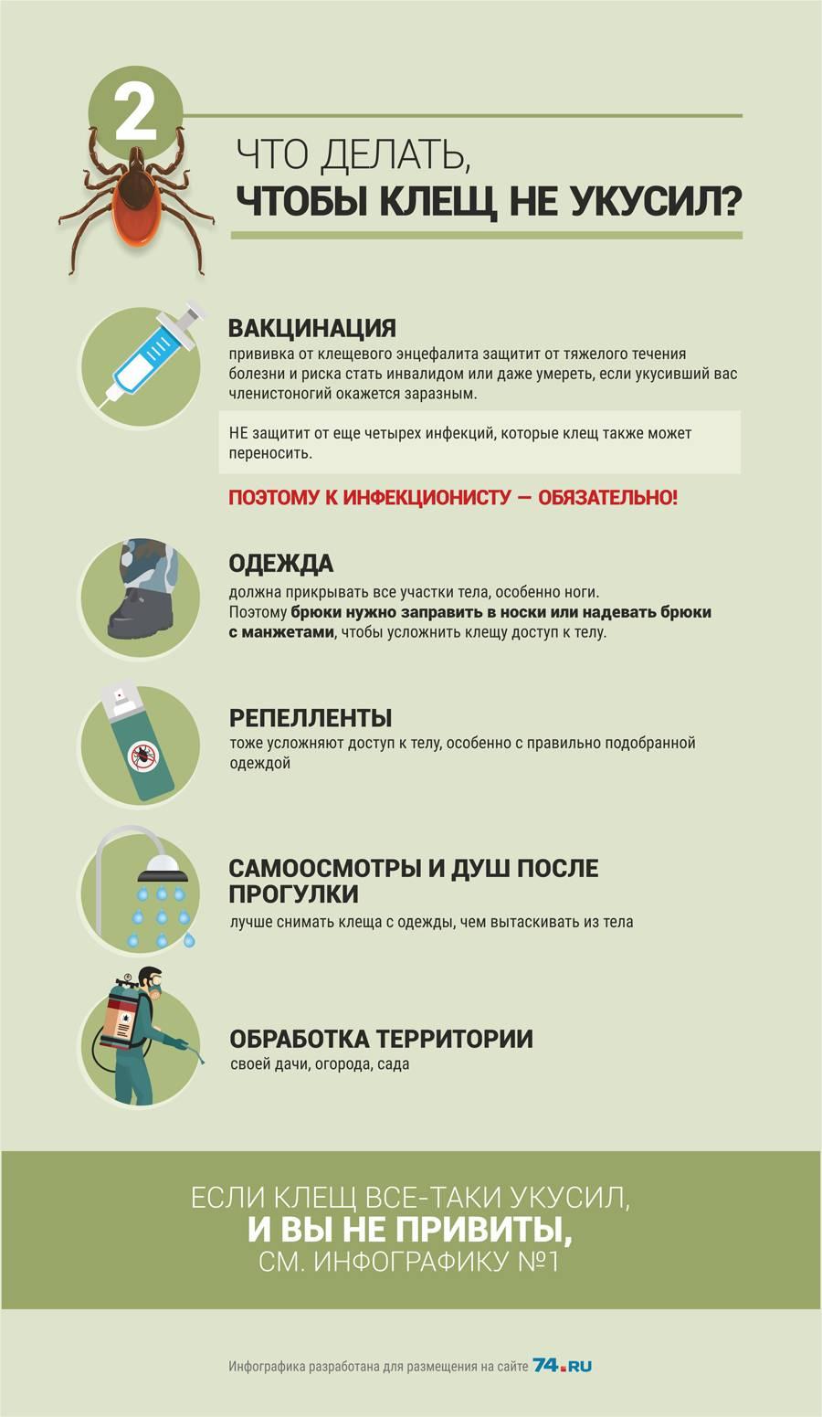 Клещевой энцефалит у детей: диагностика и лечение