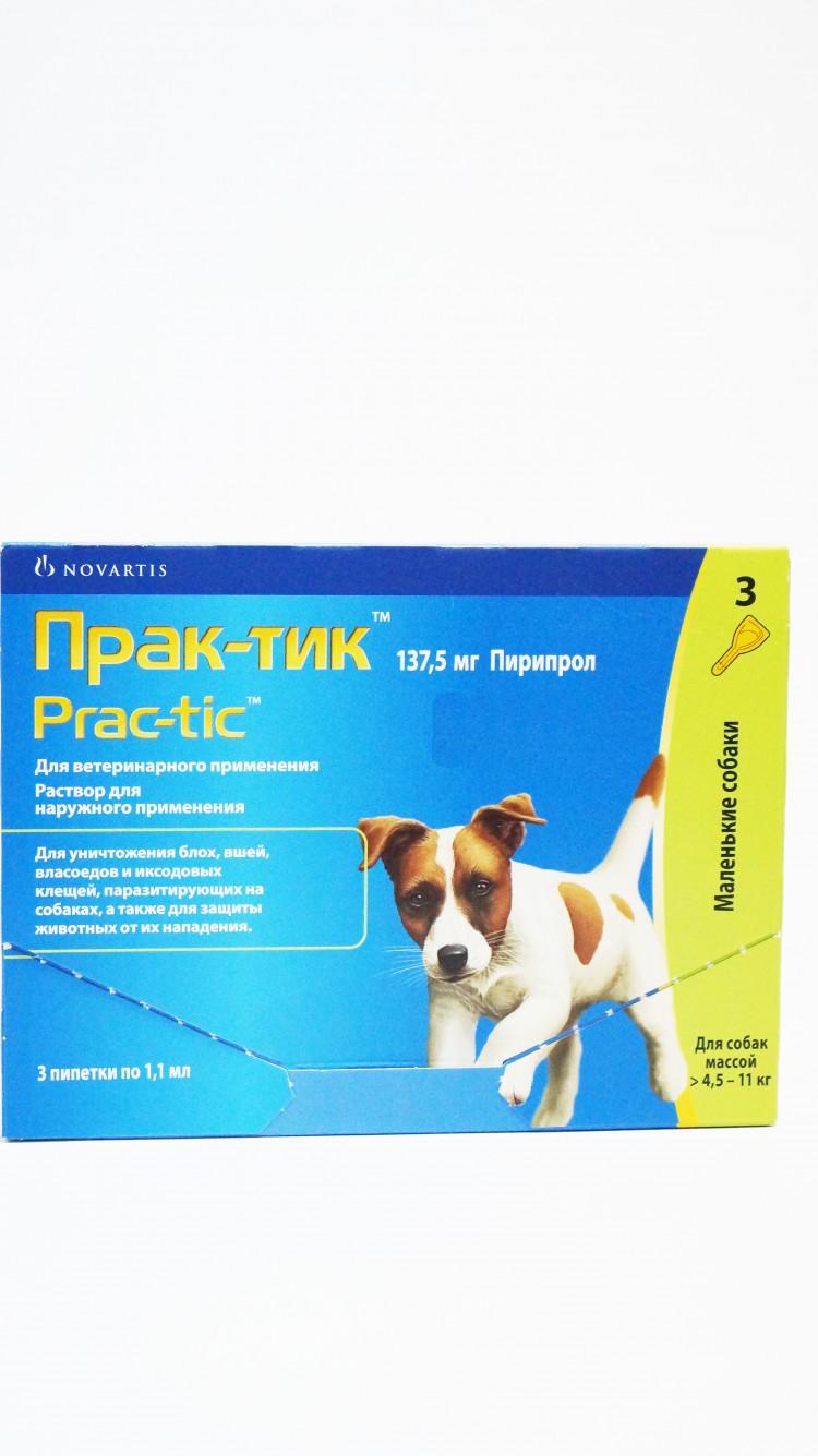 Практик от клещей для собак - эффективность, показания к применению, противопоказания