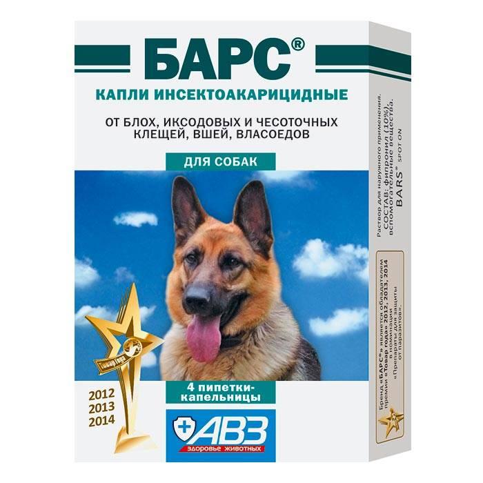 Капли от блох и клещей для собак: рейтинг по качеству и отзывам