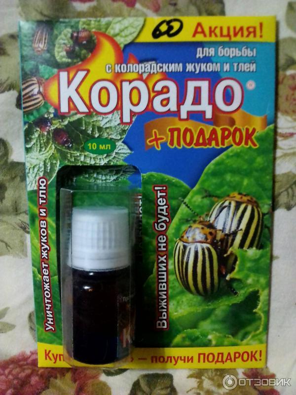Самое эффективное средство от колорадского жука
