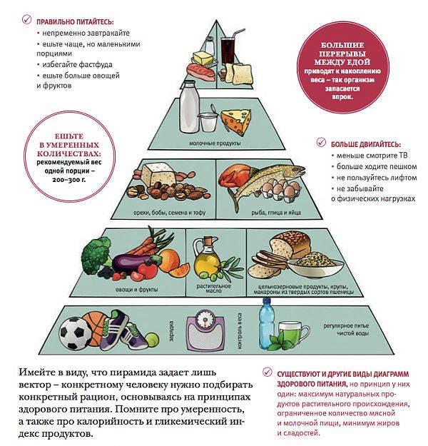Что едят тараканы: рацион в естественных и домашних условиях, предпочтения в пище и её необходимое количество