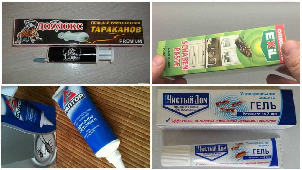Как избавиться от тараканов в частном доме проверенные способы